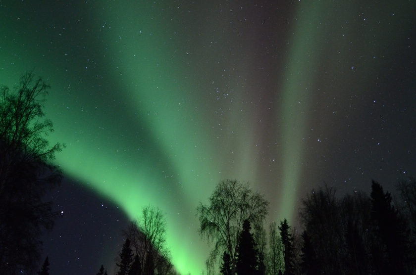 Aurora on the night of 28 February 2014,  Alaska